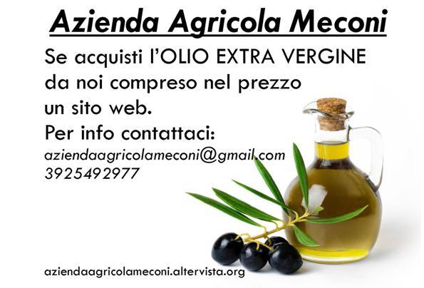 se_acquisti_olio_extra_vergine_2-2